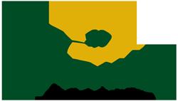 Oleificio Franza – Frantoio a Bovino – Foggia – Olio EVO di Capitanata Logo